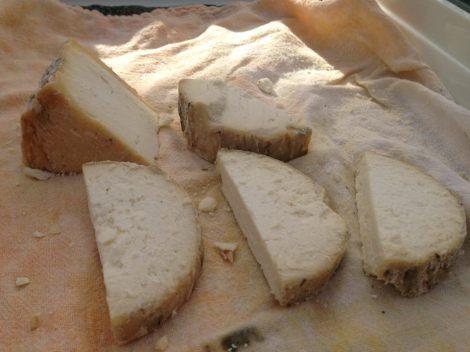 bonnyclabber cheese co